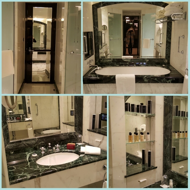 posh bathroom, with shower area, toilet area and tv in bathtub; full amenities.
